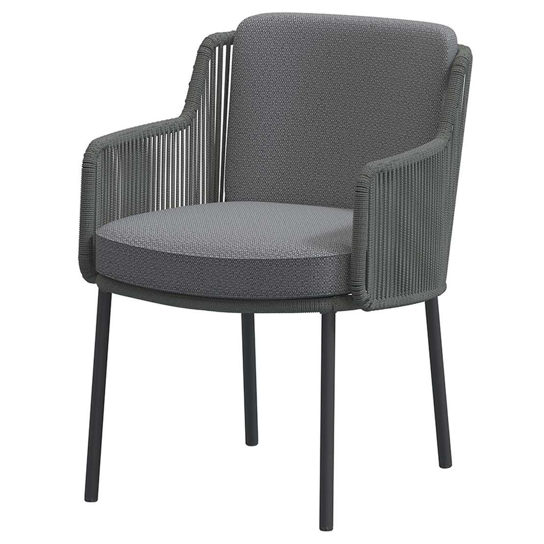 Bernini dining chair Platinum with 2 cushions